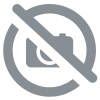 obsidienne flocon de neige pierre plate